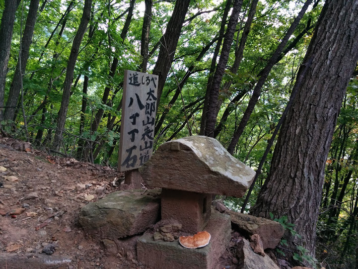 上田市 太郎山